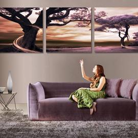 Wonderful Sunset & Trees Scenery Pattern Cross Film Wall Art Prints