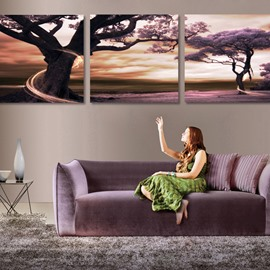 Wonderful Sunset & Trees Scenery Pattern Cross Film Wall Art Prints