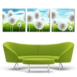 New Arrival Dandelion On The Grasslands Cross Film Wall Art Prints