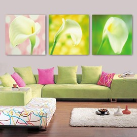 New Arrival Blooming Lily Cross Film Wall Art Prints