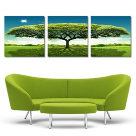 New Arrival Sunlight Percolates Through The Thick Leaves Film Wall Art Prints