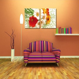 New Arrival Various Corlorful Daisy Film Wall Art Prints