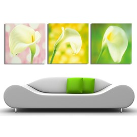 New Arrival Elegant Tulip Under Sunshine Film Wall Art Prints