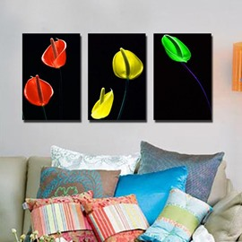 New Arrival Colorful Flower Canvas Wall Prints