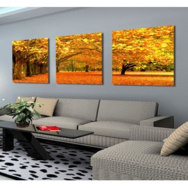 Gorgeous Trees and Leaves Fallling on Ground Canvas Wall Art Prints
