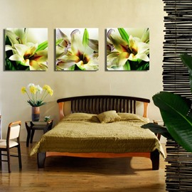 Fancy and Elegant Lily Blossom Pattern None Framed Canvas Wall Art Prints