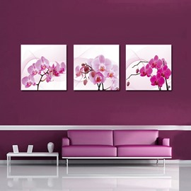 Flattering Pretty Orchid Film Art Wall Prints