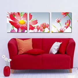 Vivid Pretty Daisy Film Art Wall Prints