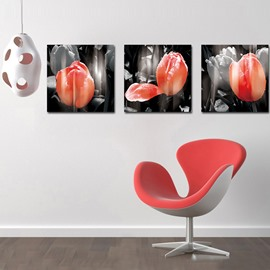 Adorable Delicate Tulip Film Art Wall Prints
