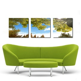 Beautiful Sky 3-Pieces of Crystal Film Art Wall Print