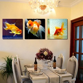 Beautiful Goldfish 3-Pieces of Crystal Film Art Wall Print