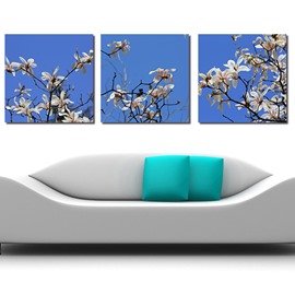 New Arrival Graceful Flowers 3-Pieces of Crystal Film Art Wall Print