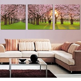 Pretty Sunshine and Sakura 3-Pieces of Crystal Film Art Wall Print