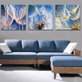 Fantastic Dandelion 3-Piece Crystal Film Art Wall Print