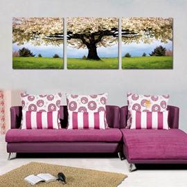 Wonderful Pear Blossom 3-Piece Crystal Film Art Wall Print
