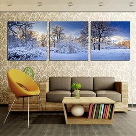 Winter Snowy Night in Forest 3-Panel Canvas Wall Art Prints