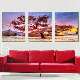 Unique Tree in Field 3-Panel Canvas Wall Art Prints