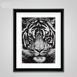 Modern Creative Black Tiger Head Pattern Wall Art Print