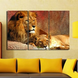 Fancy Modern European Style Realistic Lions Pattern 3 Pieces Framed Wall Art Prints