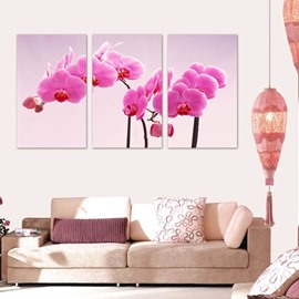Pink Butterfly Orchid Pattern 3 Panels Framed Wall Art Prints