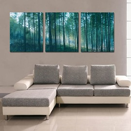 Green Forest Scenery 3-Piece Fabric Hanging Rectangles Framed Wall Prints