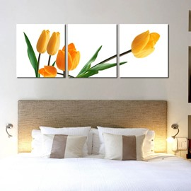Beautiful Tulip Flowers Pattern Design 3 Pieces Framed Wall Art Prints