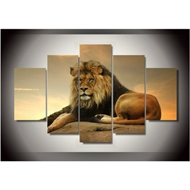 Yellow Sitting Lion 5-Piece Canvas Non-framed Wall Prints