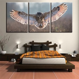 11.8*17.7in*3 Pieces Eagle Hanging Canvas Waterproof and Eco-friendly Wall Prints