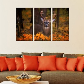 Deer Waterproof and Eco-friendly 11.8*17.7in*3 Pieces Hanging Canvas Wall Prints