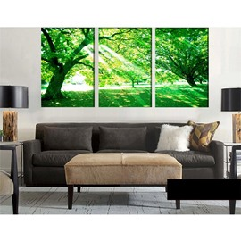 11.8*17.7in*3 Pieces Forest Hanging Canvas Waterproof and Eco-friendly Wall Prints