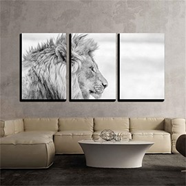 3 Pieces Grey Lion Pattern Hanging Canvas Waterproof Eco-friendly Framed Wall Prints
