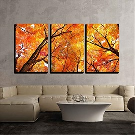 3 Pieces Maple Pattern Hanging Canvas Waterproof Eco-friendly Framed Wall Prints