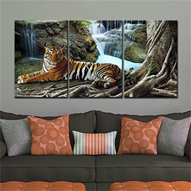 3 Pieces Tiger Pattern Hanging Canvas Waterproof Eco-friendly Framed Wall Prints
