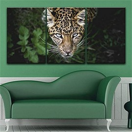 Tiger Head 3 Pieces Hanging Canvas Waterproof Eco-friendly Framed Wall Prints