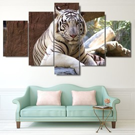 5 Pieces Tiger Pattern Hanging Canvas Waterproof Eco-friendly Framed Wall Prints