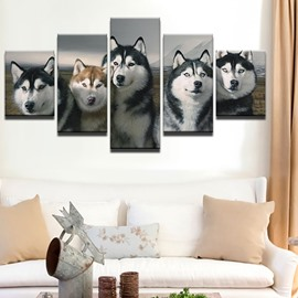 Huskie Pattern 5 Pieces Hanging Canvas Waterproof Eco-friendly Framed Wall Prints