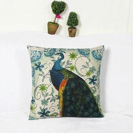 Splendid Peacock and Retro Vine Square Throw Pillow Case