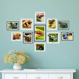 Amazing Countryside Style Colorful Frog Photo Frame Wall Stickers