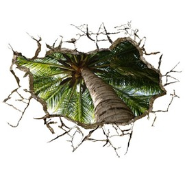 Amazing Creative 3D Coconut Tree Wall Sticker