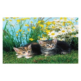 Super Lovely Cats on the Ground Pattern Non-slip Doormat