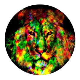 Colorful Lion Head Abstract Pattern Round PVC Nonslip and Waterproof Entrance Doormat