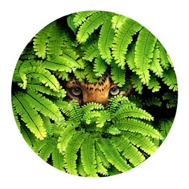 Lion Eyes Hiding behind Green Leaves Modern Pattern PVC Nonslip Round Doormat