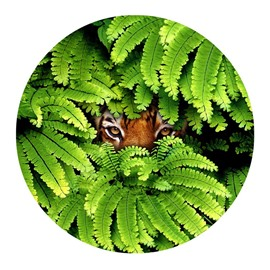 Tiger Eyes Hiding behind Green Leaves Pattern PVC Nonslip Round Doormat