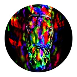 Abstract Horse Pattern PVC Colorful Round Water Absorption and Nonslip Doormat