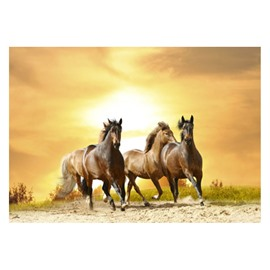 Vivid Horses Running in the Desert at Sunset Non-slip Decorative Doormat
