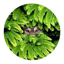 Wolf Hiding behind Green Leaves Modern Pattern Round Skip Resistance Doormat