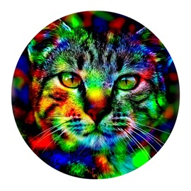 Lovely Cat Pattern PVC Abstract Colorful Non Slipping Entrance Doormat