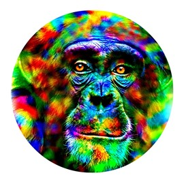 Colorful Chimpanzee Head Pattern PVC Modern Non-slip Round Entrance Doormat