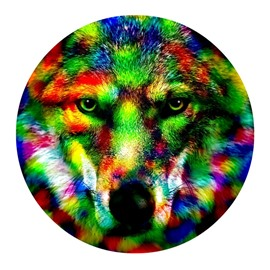 Amazing Wolf PVC Abstract Nonslip and Water Absorption Colorful Round Doormat