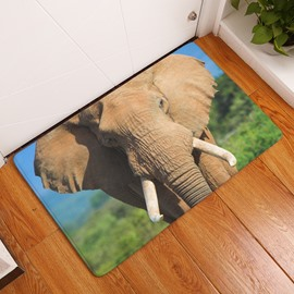 16×24in Brown Elephant Flannel Water Absorption Soft and Nonslip Bath Rug/Mat
